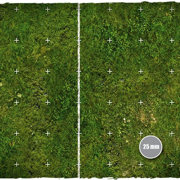 blood-bowl-playmat-grass-field-2