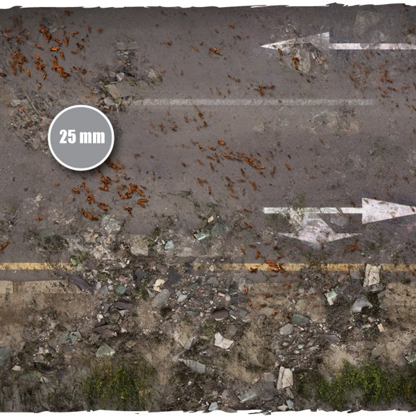 walking dead city game mat 1